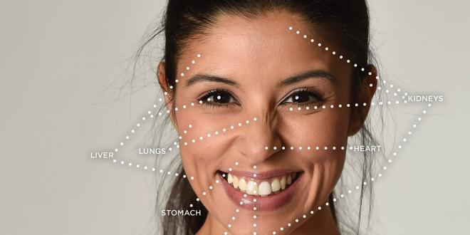 A diagram of face reading areas.